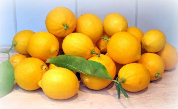 lemons1-1024x630